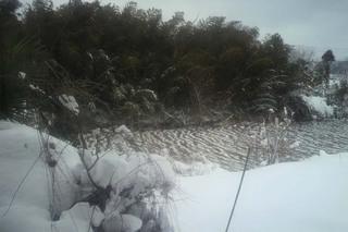川凍る.jpg