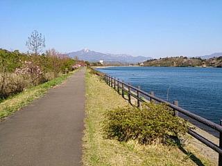 春の散歩.jpg