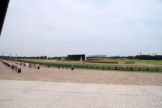 東京競馬場2.jpg