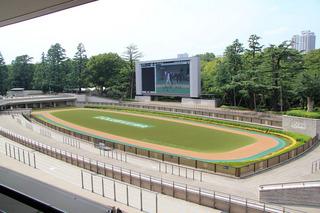 東京競馬場3.jpg